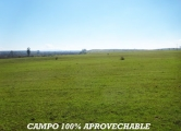 CAMPO EN  CHILLAN 708 HAS.